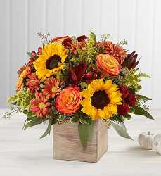 Happy Harvest from Bixby Flower Basket in Bixby, Oklahoma